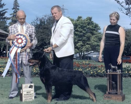 2003 Sovereign Rottweiler Club Specialty - BISS